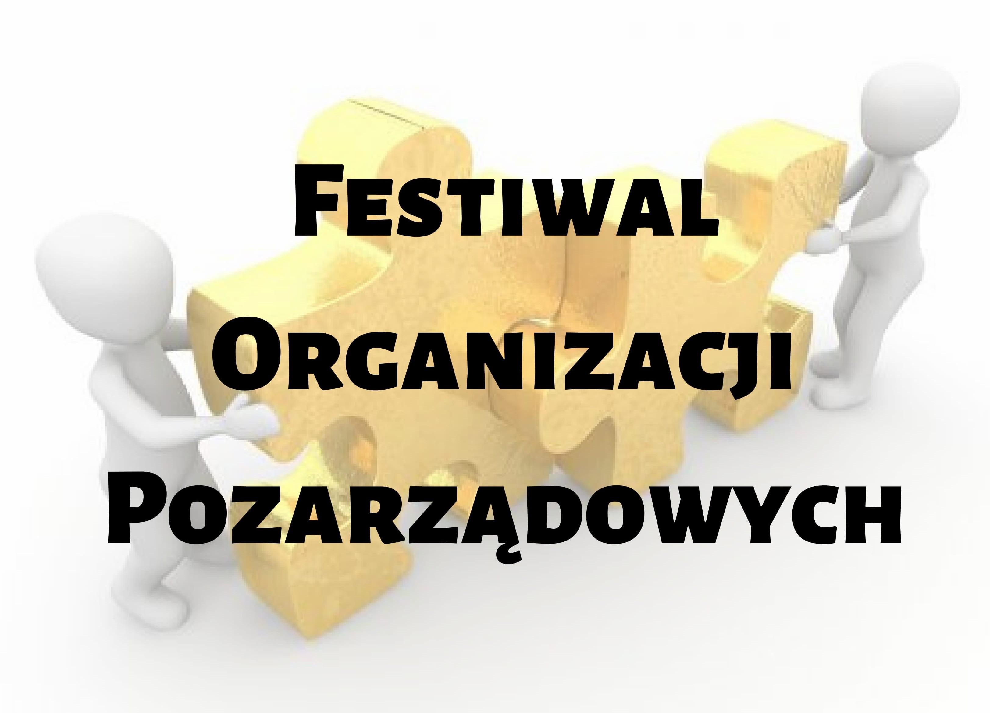 Festiwal Organizacji Pozarządowych-1